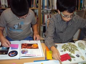 Cercant respostes al llibres de coneixements
