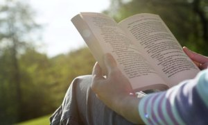 popis-literature