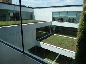 jardín interior 1